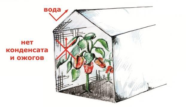 Тройная защита водонепр. армир. белый  80г/м2