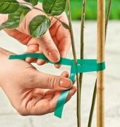 Лента для подвязки растений.
