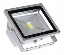 Прожектор светодиодный PFL- 50Вт/CW/GR Jazzway