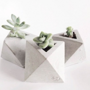Горшок для медленно растущих цветов